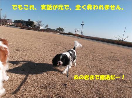 06_convert_20150108183103.jpg