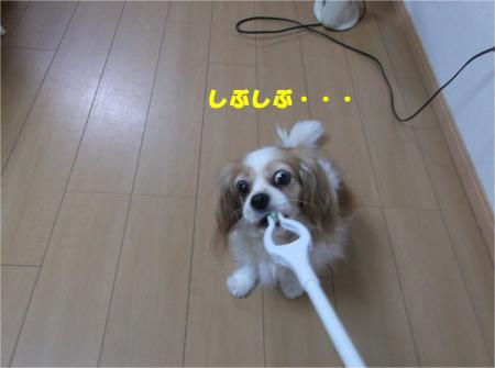 06_convert_20150130134217.jpg
