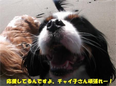 07_convert_20141228161936.jpg