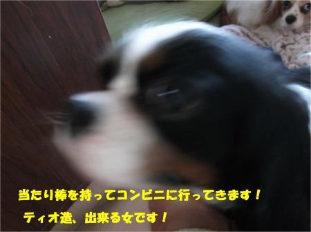 07_convert_20150219190406.jpg
