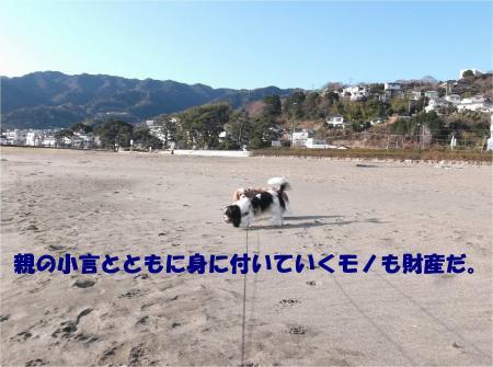 07_convert_20150224194430.jpg