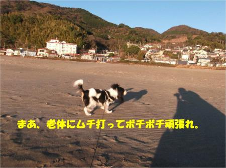 08_convert_20150123185408.jpg