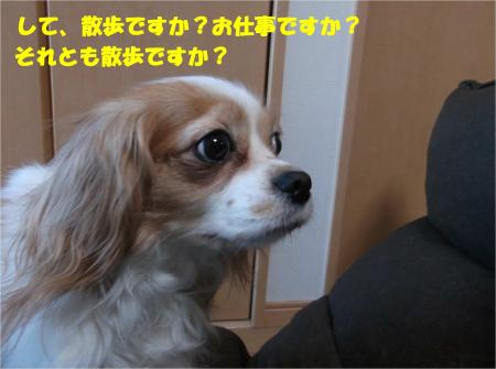 08_convert_20150206201247.jpg