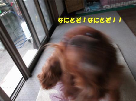 09_convert_20150220194441.jpg