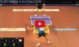 許昕VSヤンツー(1回戦) 世界選手権2015