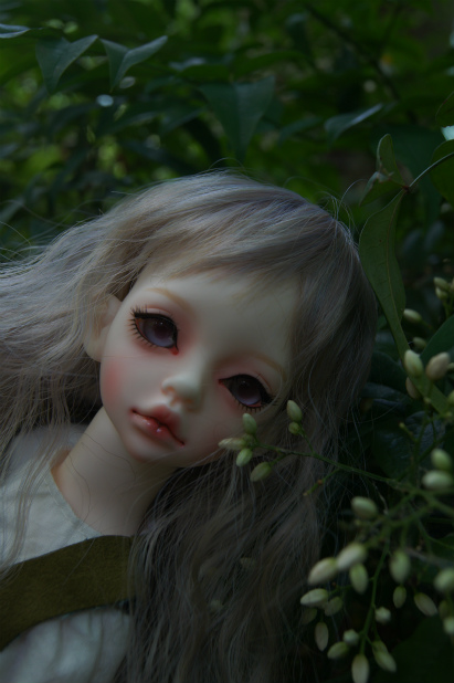 0・201565 (20)