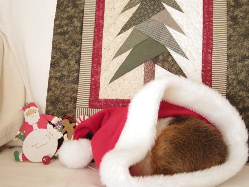 クリスマス撮影秘話1