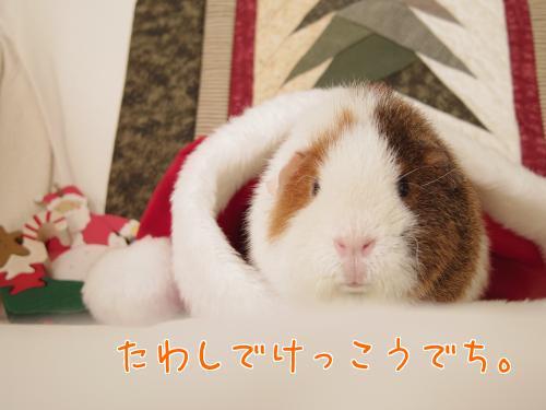 クリスマス撮影秘話2