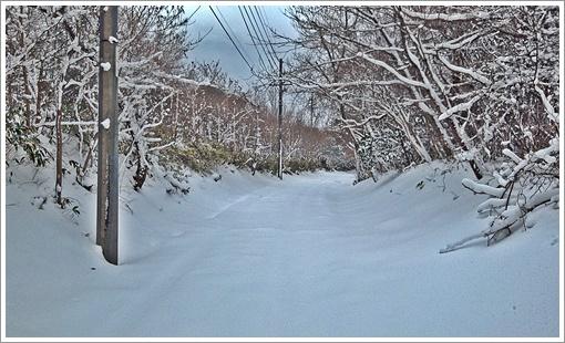 2015togusagamine_winter14.jpg