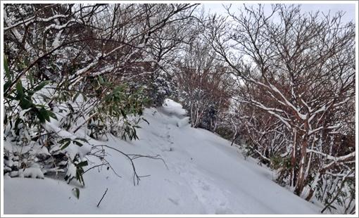 2015togusagamine_winter20.jpg