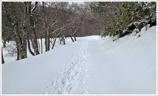 hibasan_winter05.jpg