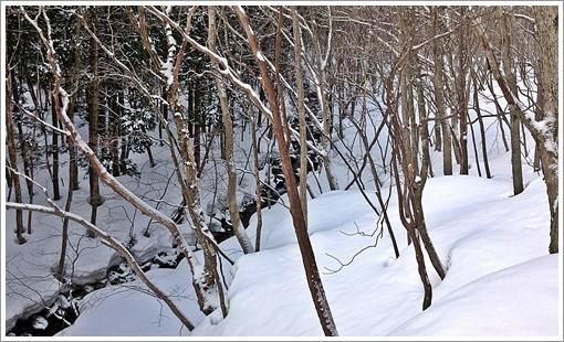 hibasan_winter07.jpg