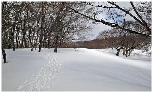 hibasan_winter08.jpg