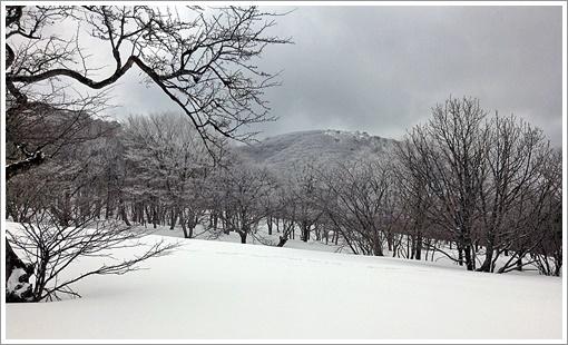 hibasan_winter10.jpg