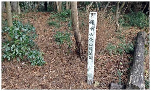 kuga_rengezan22.jpg
