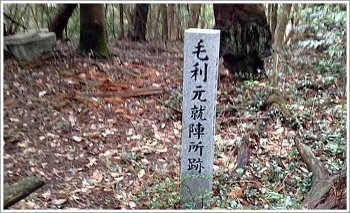 midoriyama08.jpg