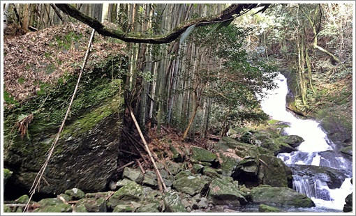 odori_uokirinotaki03.jpg