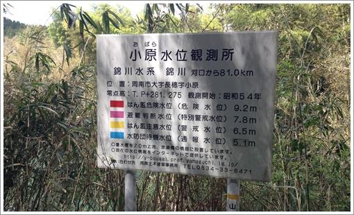 susuma_midoriyama31.jpg