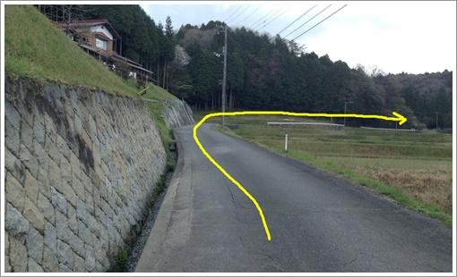 susuma_midoriyama34.jpg