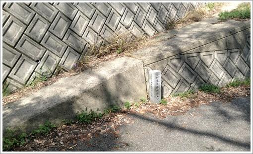susuma_midoriyama38.jpg