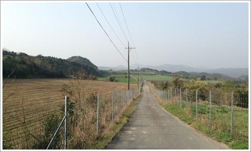 terachiyama_Z13.jpg