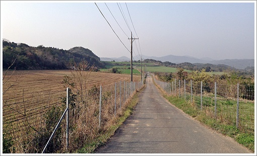 terajiyama07.jpg