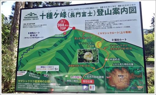 togusagamine_yamashaku03.jpg