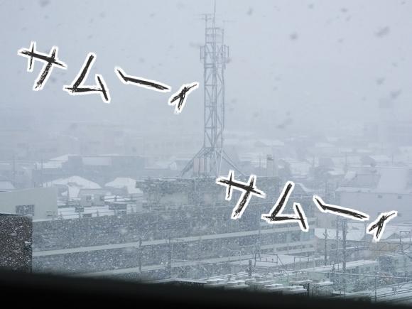今年初の積雪2