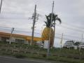 2015.2.3沖縄9