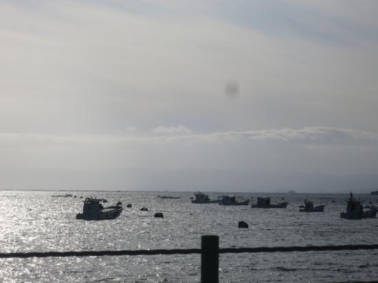 2015.3.4香川・鹿児島10