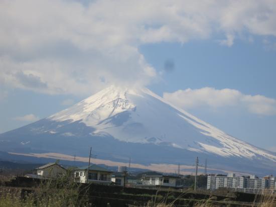 2015.3.25神奈川・静岡7