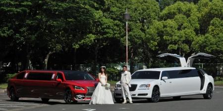 limousin-wedding