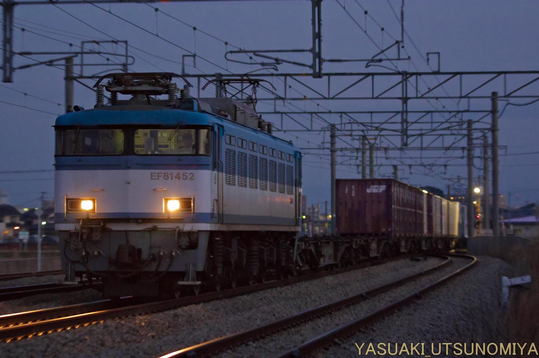 EF81452