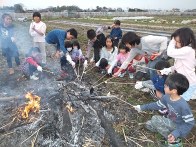 たき火マシュマロ焼き