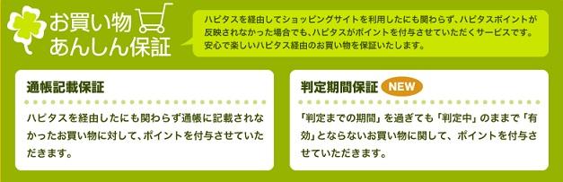 hapi2.jpg