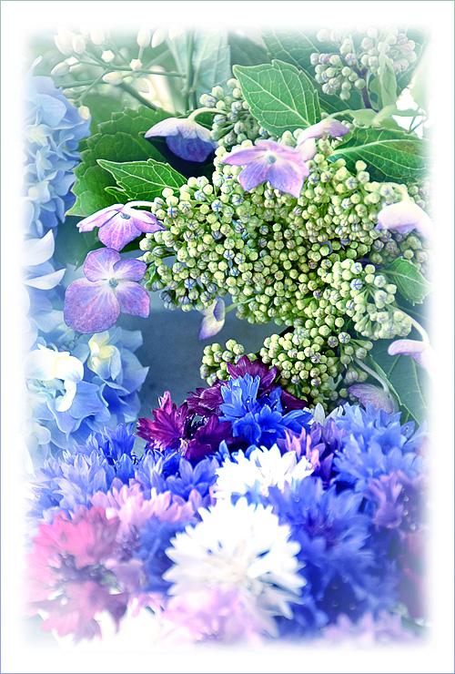 flower_15_6_4_6