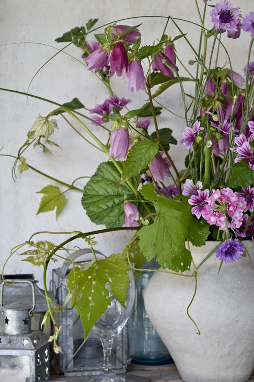 flower_15_5_30_1.jpg