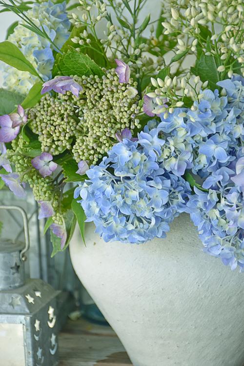 flower_15_6_4_1.jpg