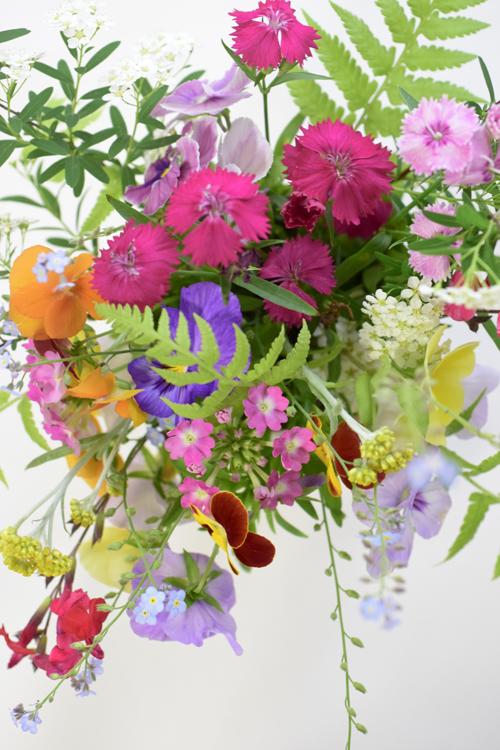 garden_flowers_15_5_9_1.jpg