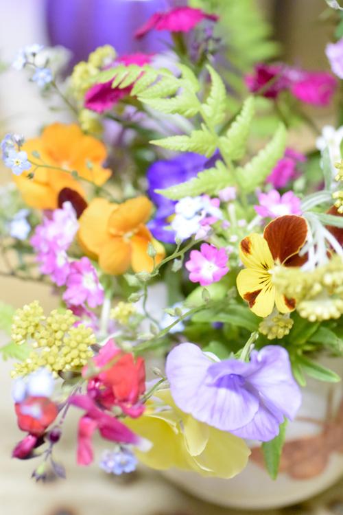 garden_flowers_15_5_9_6.jpg