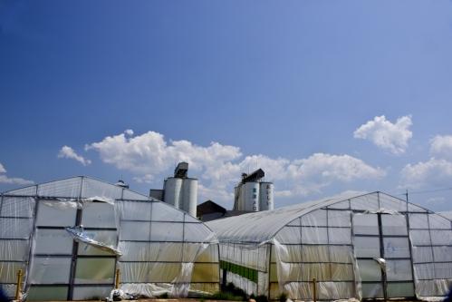 JA草津市農業センター