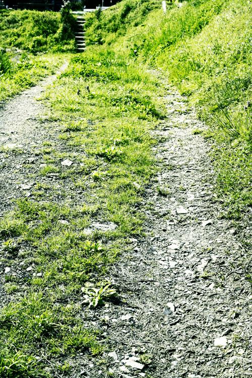 ohara_path_15_4_22.jpg