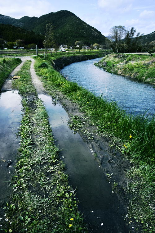 ohara_river_15_4_22.jpg