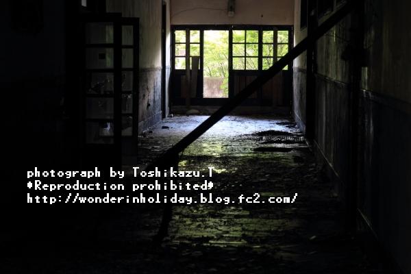 IMG_8595s.jpg