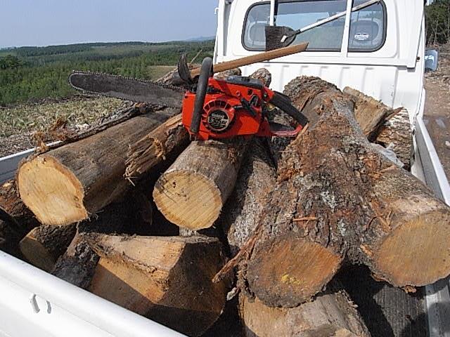 原木狩り1