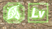 LVアップボーナス