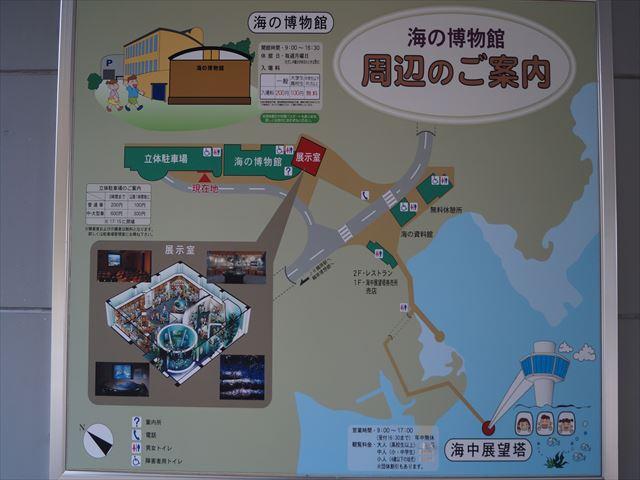 DSC05500_R.jpg
