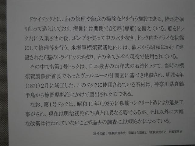 DSC08283_R.jpg