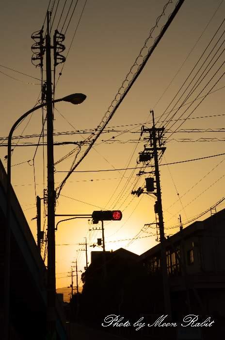 赤信号 愛媛県西条市