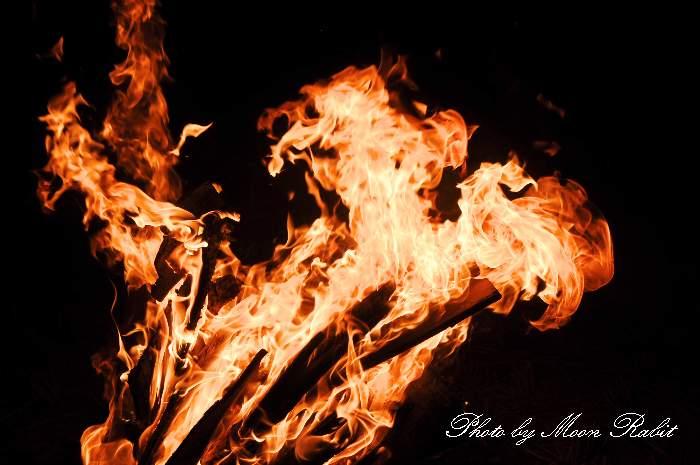 焚き火 愛媛県西条市飯岡 飯岡小学校イルミネーション